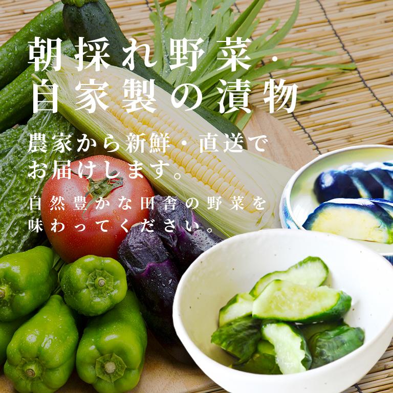 夏野菜の漬物 冷たいままお届けします。