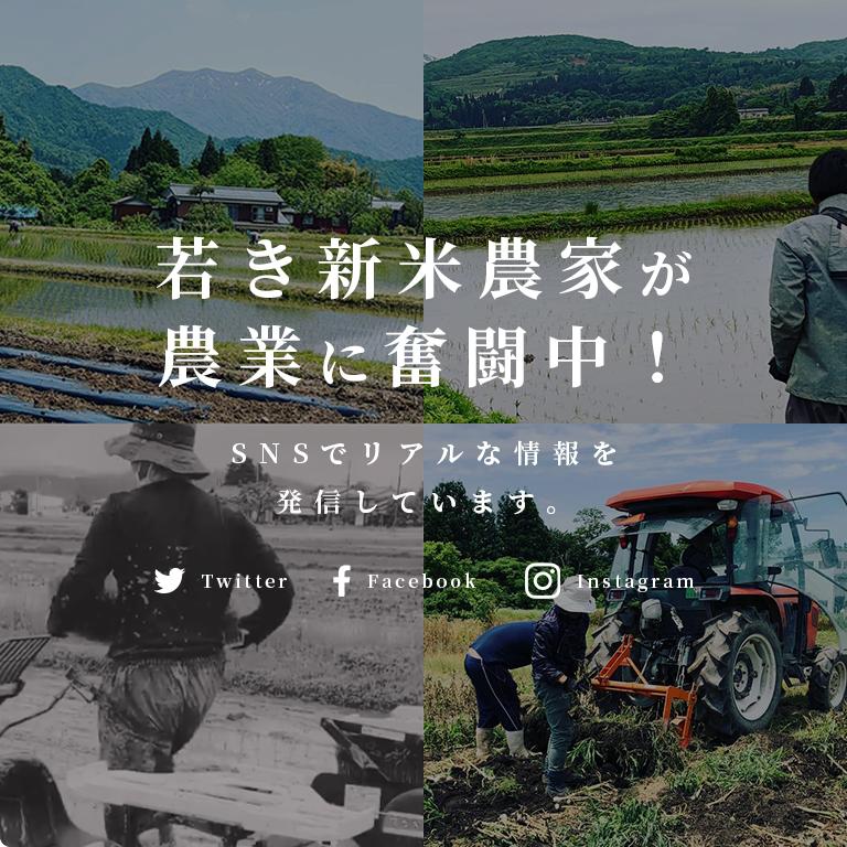 若き新米農家が農業に奮闘中!